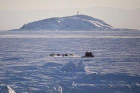 کشف هیولای یک چشم در قطب شمال +عکس