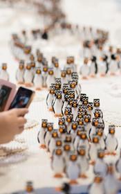 پنگوئن های عروسیکی در بیرمنگام انگلیس