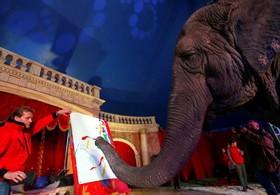 فیلی چهل و دوساله در سیرکی در مجارستان در حال نقاشی برای تماشا چیان