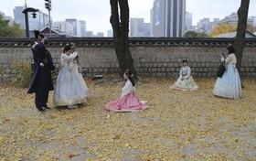 بازدید کنندگان از یک قصر قدیمی در سئول در لباس های سنتی کره ای عکس می گیرند