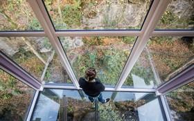 اتاق شیشه ای در یکی از باغ های انگلیس