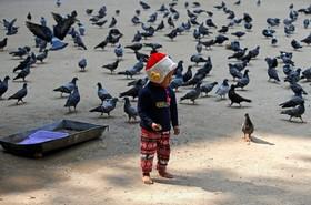تغذیه کبوترها توسط کودکی در کلکته هند