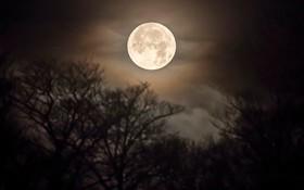 شخصیتشناسی از روی تصویر ماه+تصویر