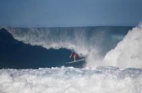 موج سواری در هاوایی آمریکا