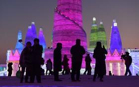 نمایشگاه مجسمه های یخی در هاربین چین