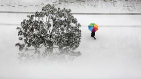 سرما در چین