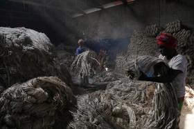 کارگاه تولید کنف در داکا بنگلادش
