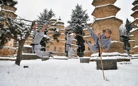 تمرین ورزشی موبدان در ایالت هنان معبد شائولین در چین