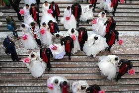 جشن جمعی ازدواج در شهر هاربین و کنار جشنواره یخ در چین