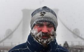 سرمای نیویورک
