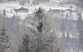 مربی یک اسکی باز در مسابقات اسکی اتریش برای دیدن بهتر حرکات وی بالای درخت رفته اس و مطالبی را با تلفن به وی می گوید