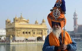 مراسم مذهبی ماگ ملا در معبد طلایی سیک ها در امریتسر در هند
