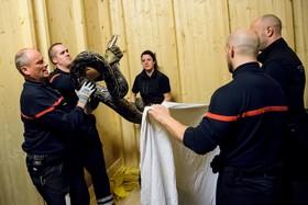 نیروهای آتش نشان در حال تمرین برای مهار مار پیتون در سوئیس