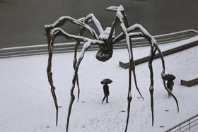 مجسمه ای از لوئیز بورگوئیز در بیلبائو اسپانیا در پارکی پوشیده از برف