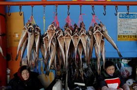 بازار ماهی فروش ها در کره جنوبی