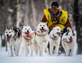 مسابقه سورتمه سواری در روسیه