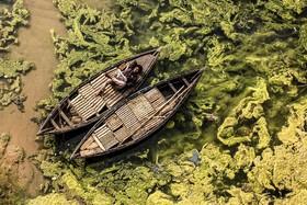 قایقرانی در هند