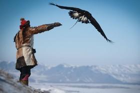 مسابقات شکار با عقاب درمیان قوم قزاق در مغولستان