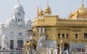 پاکسازی معبد طلایی سیک ها در امریتسر  هند