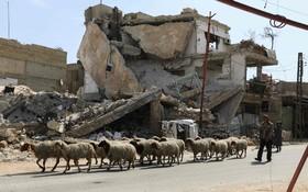 منطقه جنگی در حومه دمشق