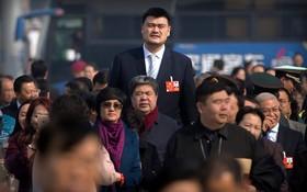 بازیکن سابق بسکتبال آمریکا یائو مینگ در جلسه کنگره خلق چین در پکن