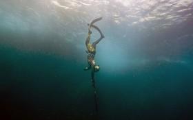 ماهیگیری با نیزه در ساحل مارسی در فرانسه