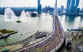 مسابقه دو ماراتن در روتردام هلند