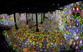 نمایشگاهی از آثار دیجی تال در نخستین مرکز نمایش هنرهای دیجیتال در فرانسه