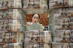 بانکی رد کره جنوبی