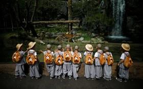 کودکان کره ای در آموزشگاه بودایی در حال دیدار از باغ وحشی در کره جنوبی