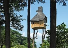 مردمی که در خانه های درختی زندگی می کنند!