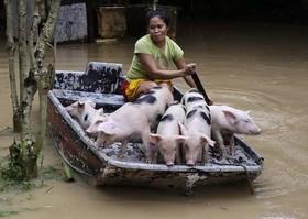روستایی سیلزده در فیلیپین