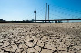 خشک شدن بخشهایی از رودخانه راین در آلمان