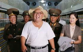 کیم جونگ اون در حال بازدید از کارخانه فراوری ماهی  در کره شمالی