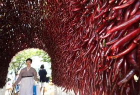 جشنواره فلفل در شهر سئول کره جنوبی