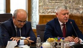 دیدار رئیس کمیسیون امنیت روسیه با رئیس مجلس