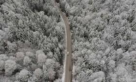 """جادهای جنگلی و برفی در """"بولو """" ترکیه"""