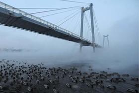 """پلی روی رودخانه در """"کرسنویارسک"""" روسیه"""