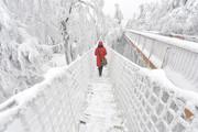 """(تصاویر)بارش برف در جمهوری چک ، خودروهای """"هوندا"""" در حال بارگیری به کشتی در بندر """"ساتهامپتون"""" بریتانیا ، قوها در حال خوردن تکههای نان و ... در عکسهای خبری روز"""