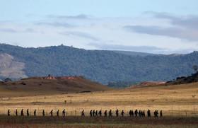 سربازان ارتش ونزوئلا در مرز با برزیل. مرز ونزوئلا با کلمبیا و برزیل به دستور نیکولاس مادورو رییس جمهوری ونزوئلا مسدود شده است.