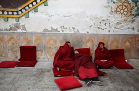 راهبان بودایی در حال استراحت در معبدی در تبت