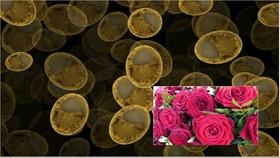 تولید عطر گل رزاز قارچ