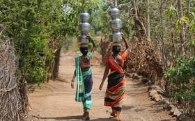 (تصاویر)  زنان هندی در حال انتقال آب از چاه به منزل