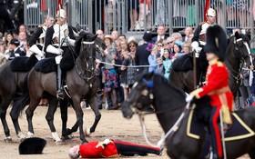(تصاویر)  سقوط یک سوارکار گارد سلطنتی در مراسم رسمی در مقابل کاخ باکینگ هام ملکه انگلیس