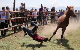 (تصاویر)  سقوط یک سوارکار در مراسم سنتی در آلماتی مرکز قزاقستان