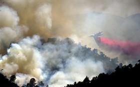 (تصاویر)  تلاش آتش نشانان برای خاموش کردن آتش در شهرستان یولو در کالیفرنیا