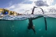 (تصاویر) صحنه ای دیدنی و حساس از زندگی در حیات وحش،اقوام سومری در حال اجرای مراسم مذهبی در نابلس،حرکت اعتراضی برای کاهش مصرف پلاستیک  و..... در عکس های خبری روز