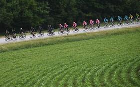 (تصاویر) مسابقه دوچرخه سواری در فرانسه