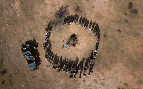 (تصاویر) تلاش حامیان محیط زیست و ادامه زندگی کرگدن در تلاش هستند تا با کندن شاخ این جانور در نقاط مختلف جان این موجود در حال انقراض را نجات دهند