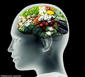 دکمه کنترل اشتهای مغز کشف شد